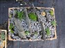 Osázená keramika :: koryto s břidlicí