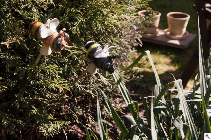hmyz_v_zahrade.jpg